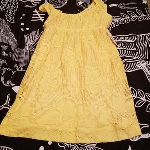 NWT Spring lace dress